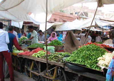 Jodhpur 8