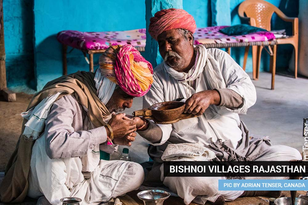 Bishnoi villages Rajasthan